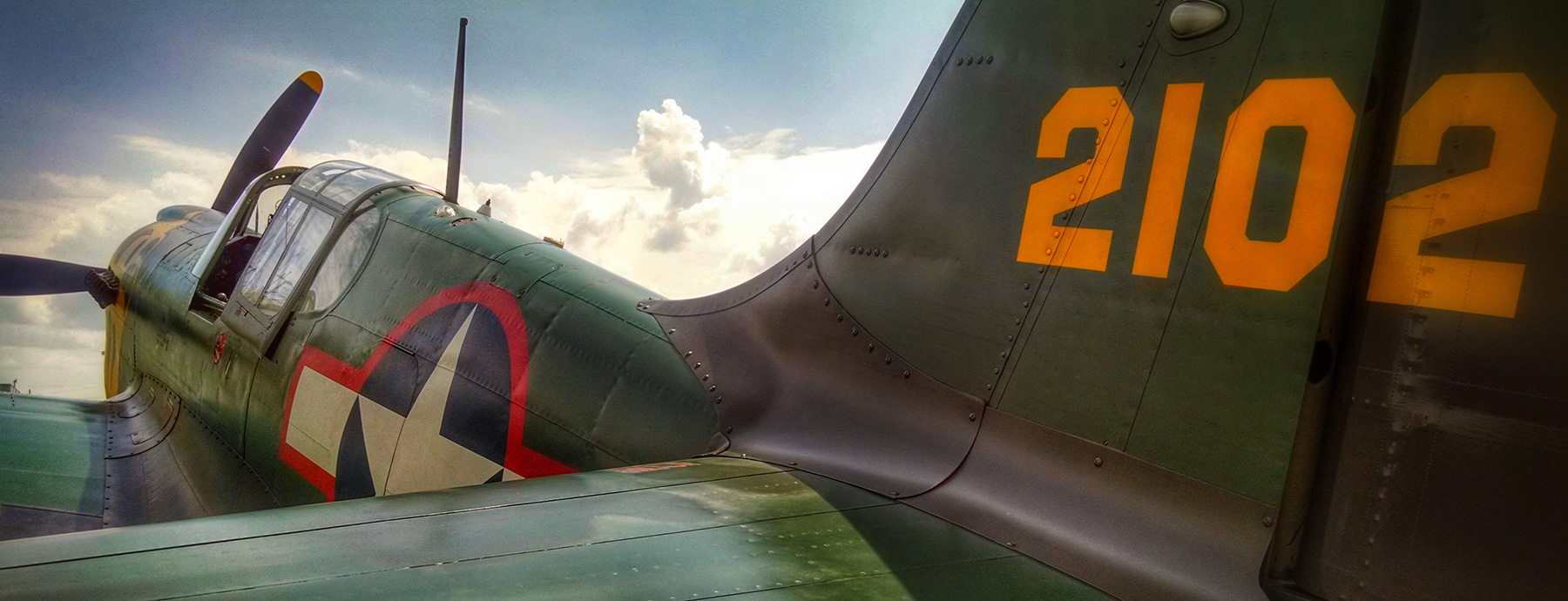 P-40 by Tom Miller
